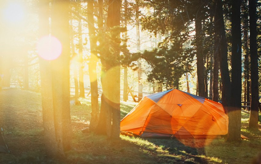 Laisvalaikis miške: ką reikia žinoti poilsiaujantiems