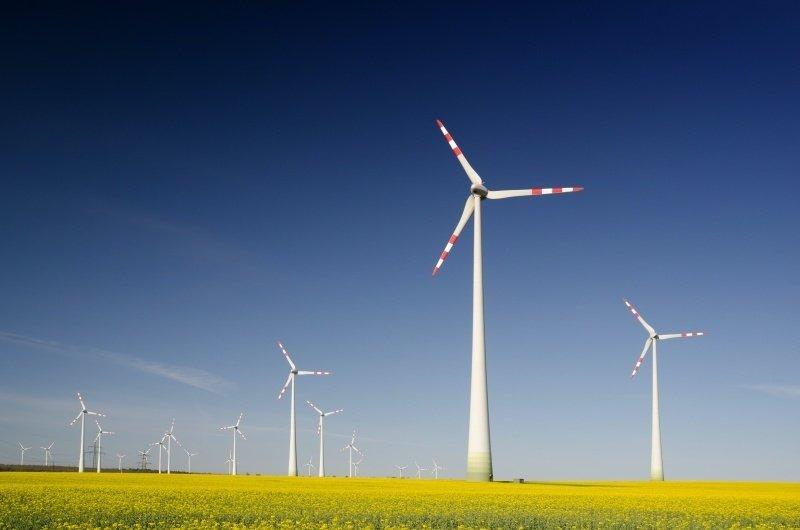 Šilalės rajone bus statomas vėjo jėgainių parkas