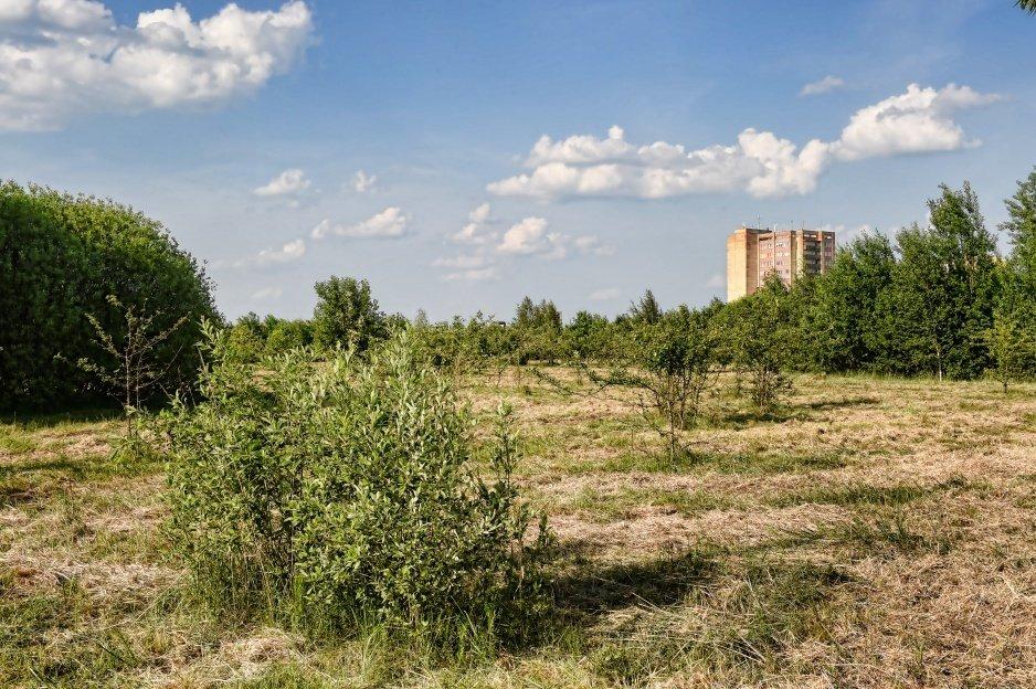 Panevėžyje bus atnaujinamas Kniaudiškių parkas