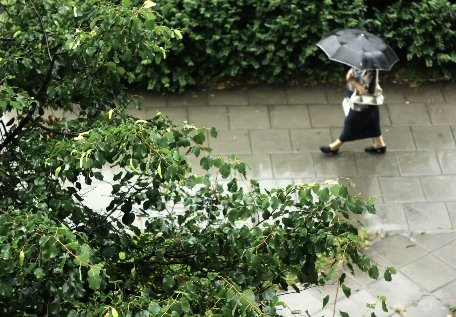 Orai: šiluma trauksis, prireiks skėčių