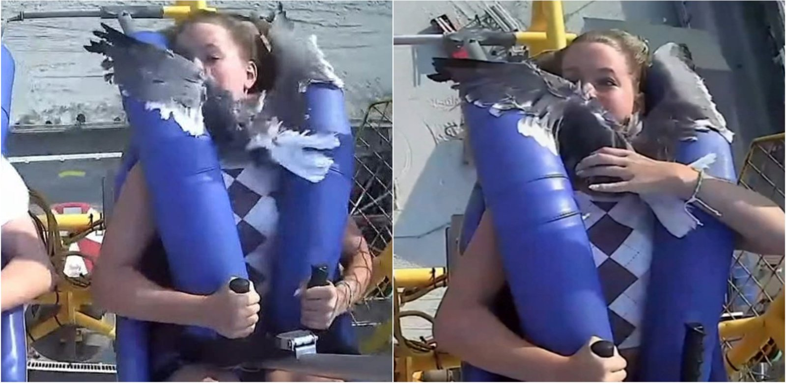 Nekasdienė patirtis: skriejant atrakcionu mergaitei į veidą rėžėsi žuvėdra