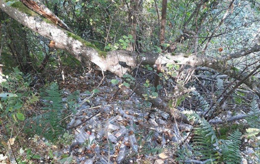 Vilniuje nustatytas mišką dviem tūkstančiais butelių užteršęs asmuo
