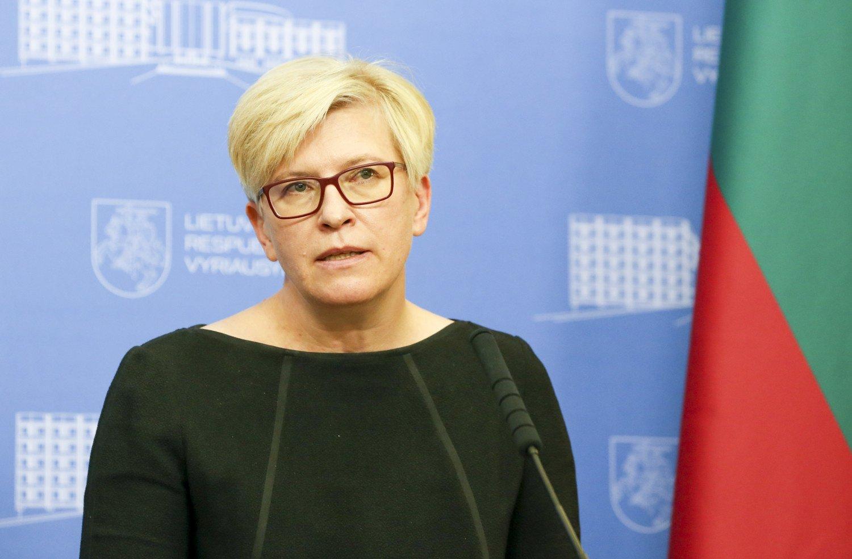Premjerė atsakė R. Karbauskiui: šešėlinei Vyriausybei suteikti išskirtinę reikšmę nebūtų pagrindo