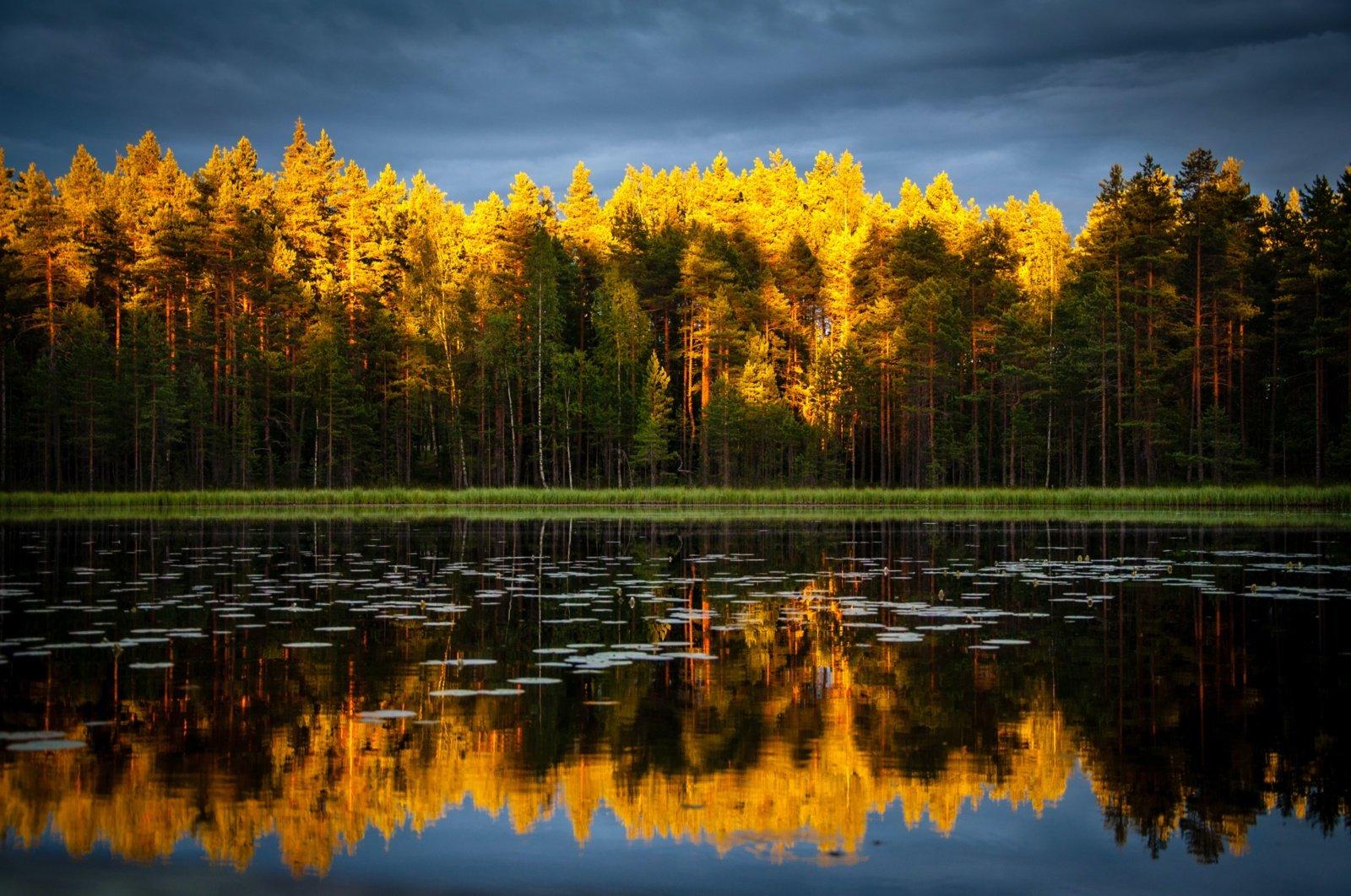 Orai: rudens grožį blaškys vėjas, dažniau palis