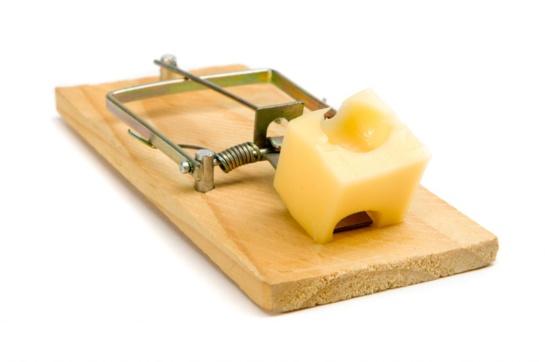 Dovanai tik sūris pelėkautuose?