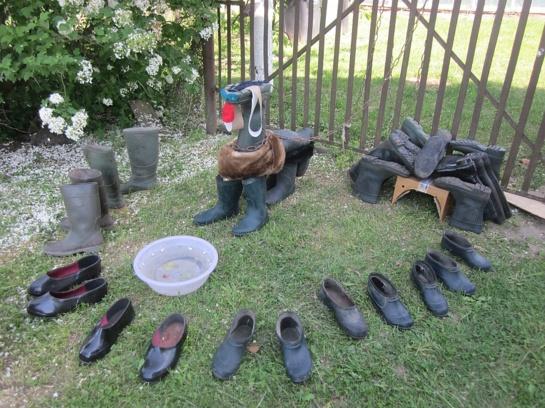 Guminių batų šou Širvintų r. Juknonių kaime