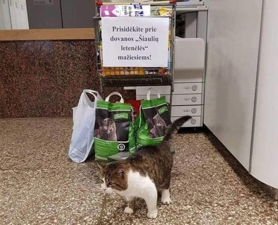 Gyvūnai iš prieglaudos lankėsi bibliotekoje