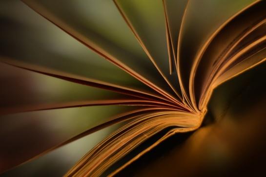 Knygų mugė – ir Šilutėje