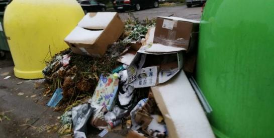 Atliekų vežėjų prašymas: neužstatyti keliukų prie konteinerių aikštelių