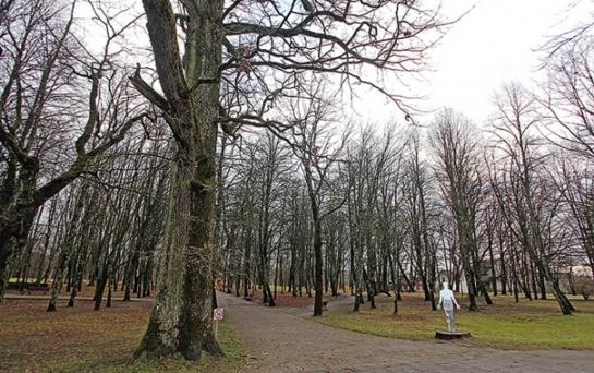 Gargždų parkas: nuo 2 mln. nusileido iki 600 000 eurų