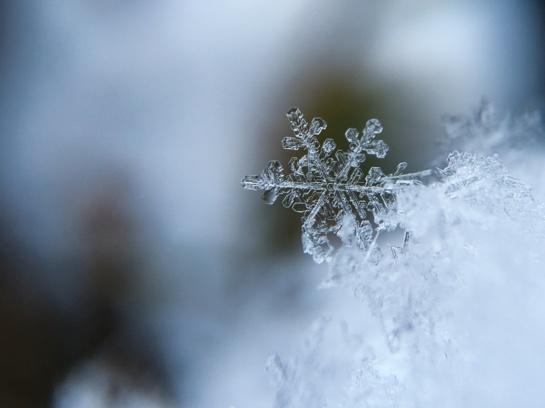 Orų prognozė: savaitgalį atkeliaus sniegas, gali kilti pūga