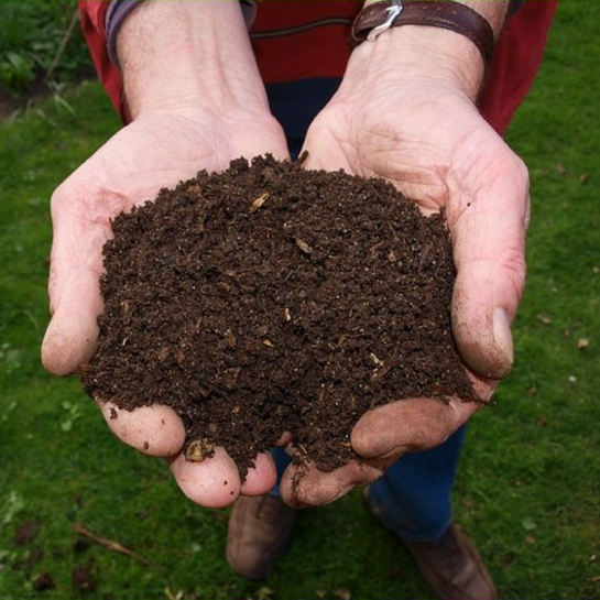 Siūlome kompostą!