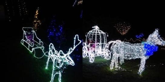 Telšių rajone įsižiebė įspūdingo grožio kalėdinė sodyba