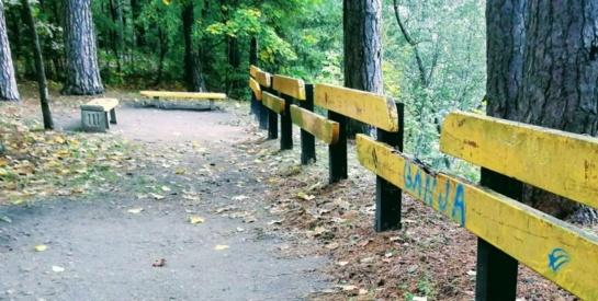 Iš sanatorijos pabėgęs vyras rastas miškelyje
