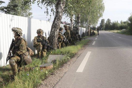 Panevėžyje vyks kariuomenės pratybos