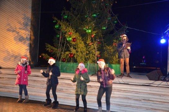 Panevėžio rajone pagrindinės Kalėdų eglės šiemet nebus
