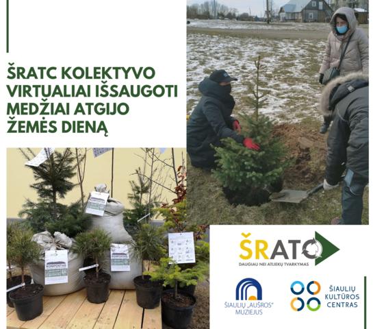 ŠRATC kolektyvo virtualiai išsaugoti medžiai atgijo Žemės dieną