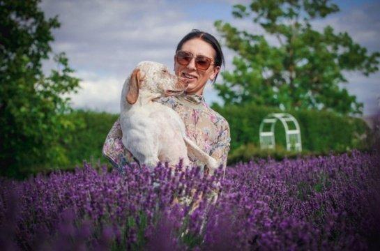 Panevėžio rajone – ir egzotinių veislių šunų veislynai