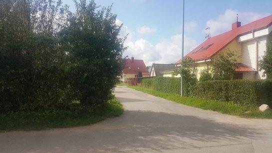 Neprižiūrimi želdiniai Žilvičio gatvėje – pavojus eismo dalyviams