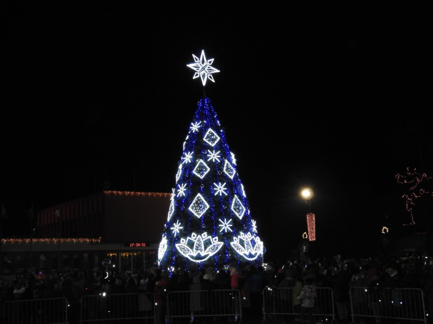 Ignalinos Kalėdų eglė suspindo lelijomis, atspindinčiomis krašto simboliką