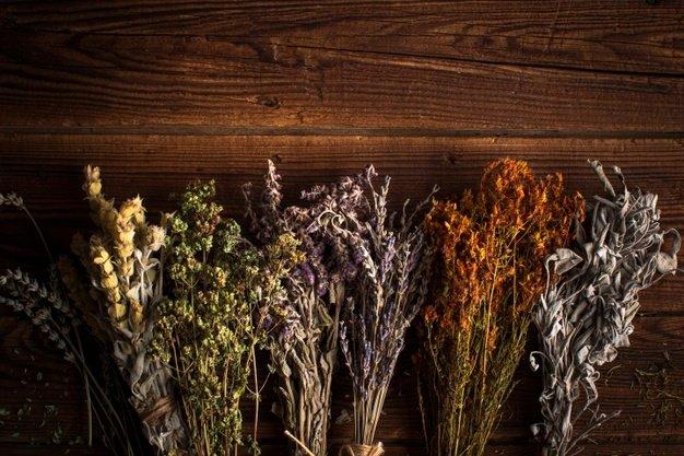 Kurių populiariausių vaistažolių atsragų naudinga turėti?
