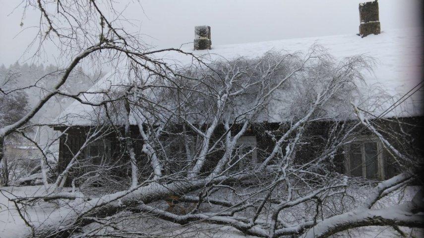 Sniegas užvertė Vievį: gyventojai piktinasi, seniūnas prašo kantrybės