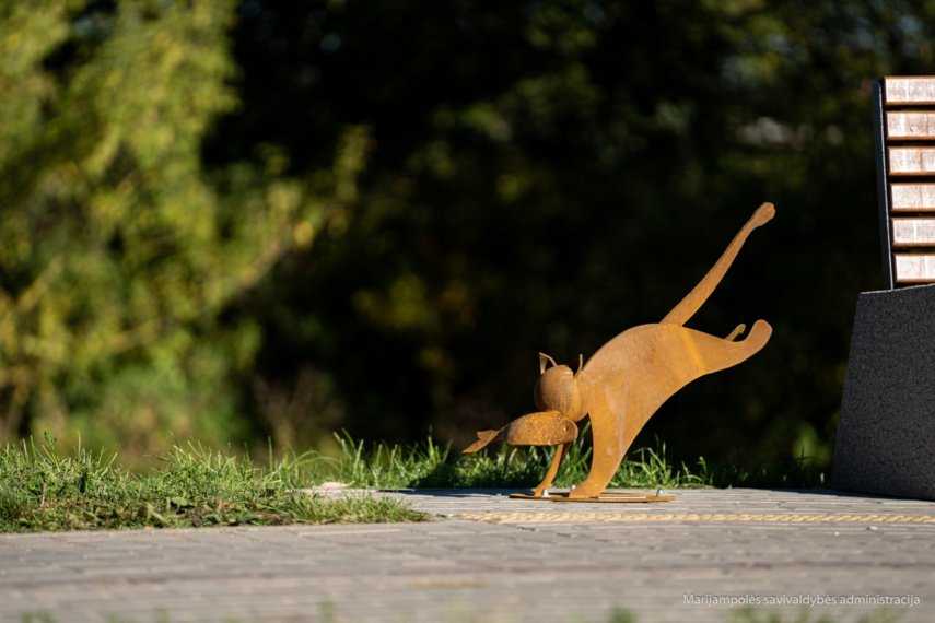 Marijampolėje apsigyveno dar septyni stebuklingi grafienės katinai