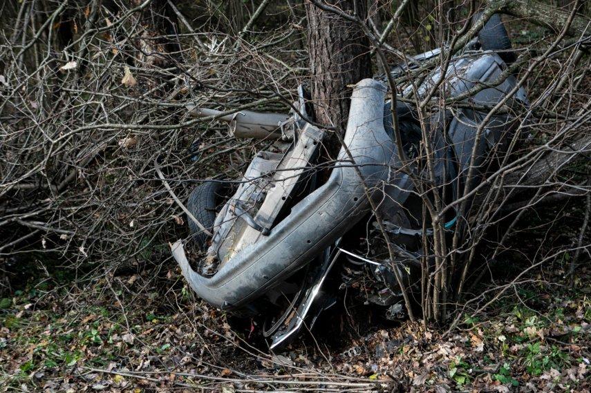 Vilniaus rajone į medį atsitrenkė automobilis