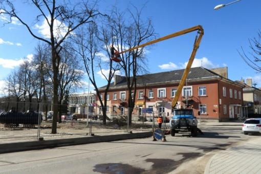 L. Ivinskio aikštėje genėti medžiai