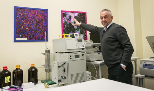 Pagaminę dirbtinę rageną, Lietuvių mokslininkai kuria prielaidas nerviniams pažeidimams gydyti