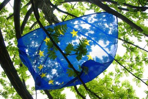 Panevėžyje bus minima Europos diena