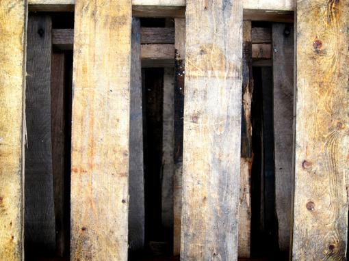 Molėtuose iš sklypo pavogė obliuotą medieną