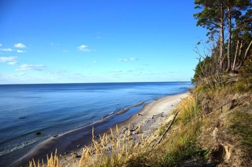 Baltijos jūrai gresia užterštumas medikamentais