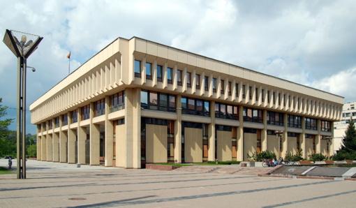 Seimo komitetas siūlo kreiptis į Konstitucinį Teismą dėl dvigubos pilietybės
