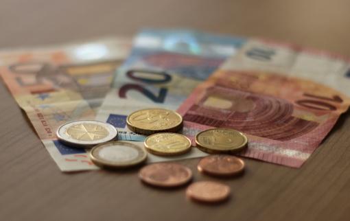 Seimūnai linkę nuo 12 iki 50 eurų padidinti mažos aukos dydį