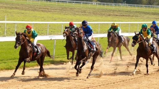 Raseinių hipodrome prasidėjo lygiųjų žirgų lenktynių sezono ciklas