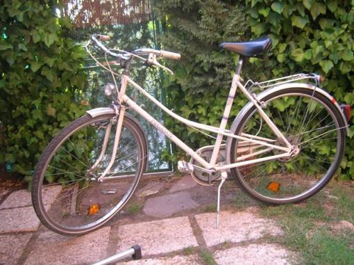 Anykščiuose pavogtas dviratis Pegasus