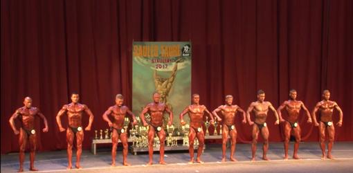 Kultūrizmo ir fitneso turnyro Šiauliuose nugalėtoju tapo J. Poliakus