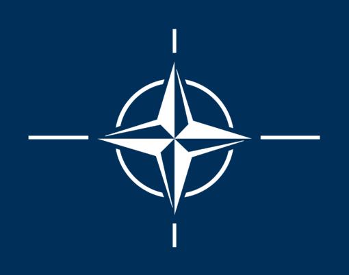 NATO jungsis prie kovos su IS koalicijos