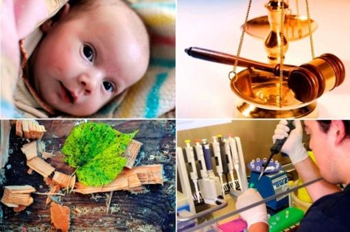 Tikslinga Šveicarų parama Lietuvos ateičiai: nėščiųjų ir naujagimių gerovei bei šalies mokslo plėtrai
