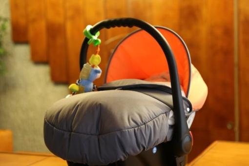 Kauno rajone užregistruotas 300 kūdikis