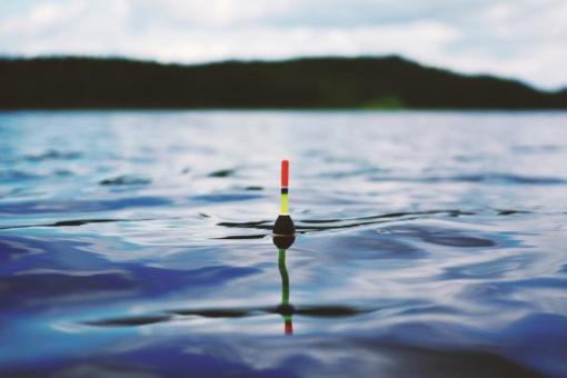 Žvejo mėgėjo bilietas – SMS žinute