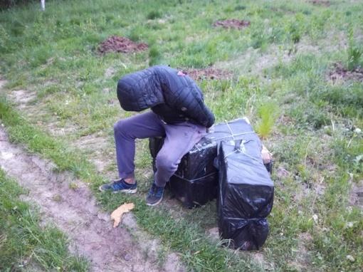 Kontrabandos nešiką pasieniečių šuo surado pasislėpusį gėlyne