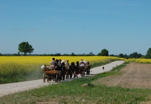 """Žemaitukų kinkiniai iškeliavo į tradicinės kultūros ir žirgų sporto šventę """"Bėk bėk, žirgeli!"""""""