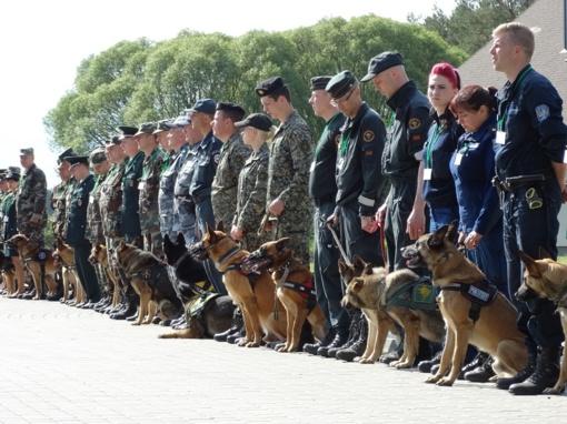 Prasidėjo VSAT tarnybinių šunų meistriškumo čempionatas
