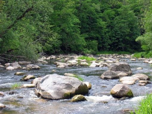 """Atsinaujinę regioniniai parkai: lankytinų vietų """"TOP 30"""""""