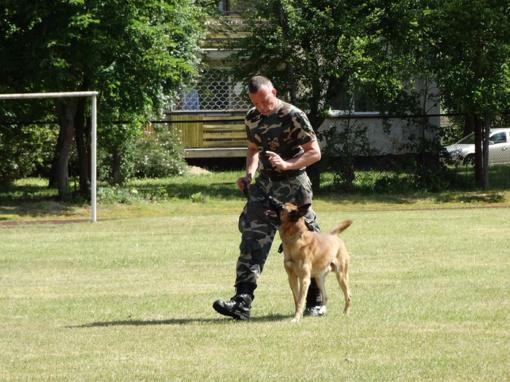 Išaiškinti geriausi pasieniečių tarnybiniai šunys