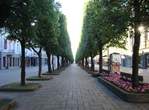 Kauno taryba spręs, ar statyti J. Vileišio paminklą Laisvės alėjoje