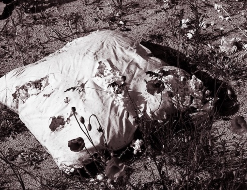 Kaune sūnus motiną uždusino ant veido prispaudęs pagalvę