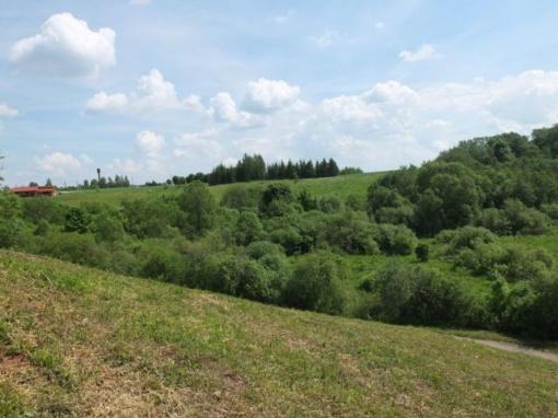 Tauragės rajono seniūnijoms skirtos lėšos želdinių ir rekreacinių teritorijų tvarkymui